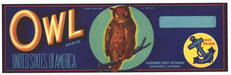 Some of the Griffin fruits were packed and shipped under the Owl Fruit Brand, shown on this label from the 1920s.