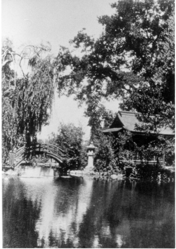 The Griffin family fish pond and tea house provided a serene spot for recreation or meditation. Note the half moon bridge and stone lantern, both traditional items found in Japanese tea gardens.