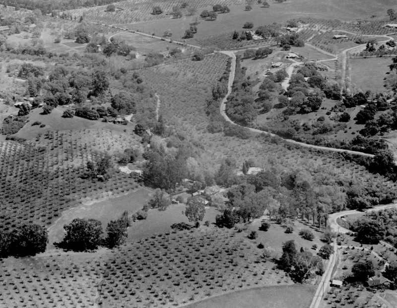 An aerial view of the portion of Los Altos Hills where Foothill College would be built. This photo, taken in 1959, shows the land before clearing and construction for the new campus had begun.
