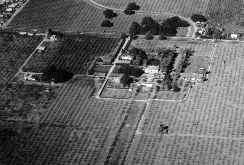 An aerial view of Le Petite Trianon and the surrounding land. The road that is crossing the upper portion of the image is Steven Creek Road (later Blvd.) To the right of Le Petite Trianon is the winery building, which still stands on the campus today. The two buildings to the left and slightly down from Le Petite Trianon are adobe structures, originally built to house servants and ranch workers. A reproduction of one of these adobe structures, in it's original location, is currently used for offices and classrooms. The peaked roof building located between the adobes and Stevens Creek is the barn. This barn stood on the De Anza campus until the late 1980s, when it was removed to make room for the four story parking garage. The exact date of this photo is unknown. It was likely taken in the early to mid 1950s.