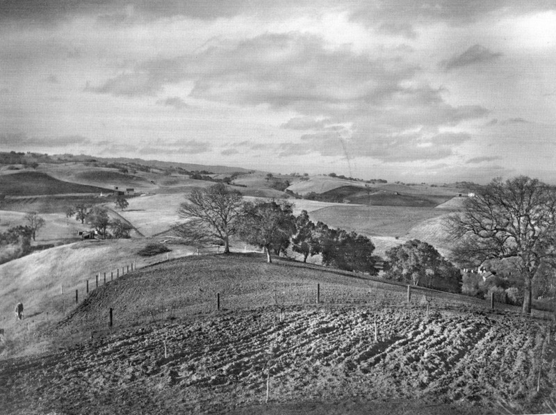 A view of the land in Los Altos Hills in 1915, later to be occupied by the Foothill College campus.