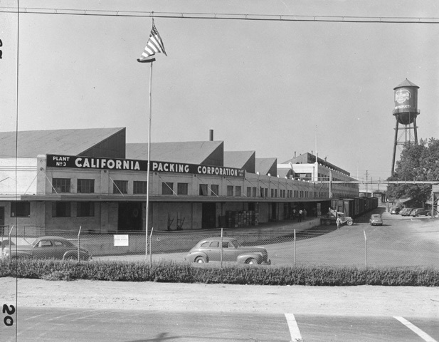 Photo of California Packing Corporation, located on Auzerais Ave. in San Jose, Ca. Photo taken in 1956.